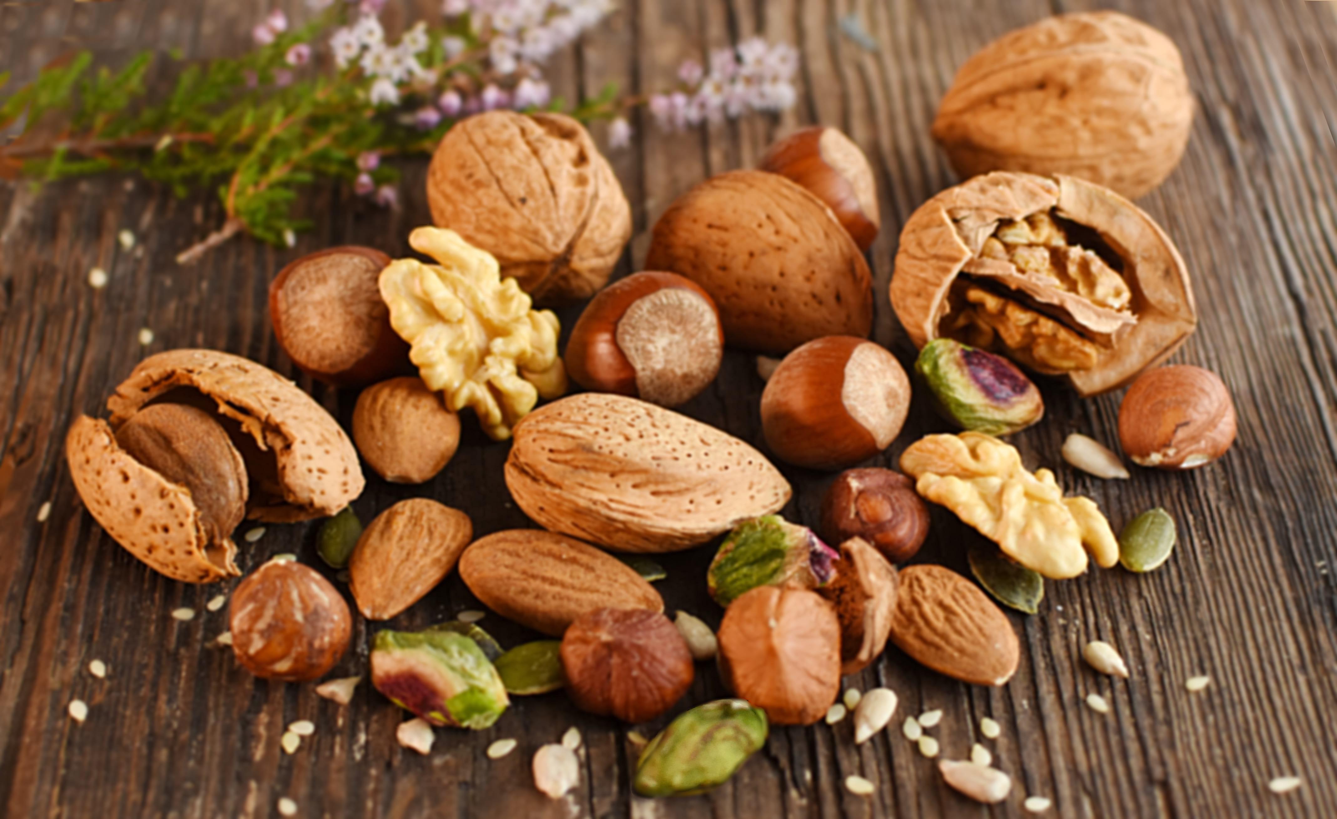 fruits-oleagineux-cholesterol Meilleur De De Abri De Jardin Bricorama Concept